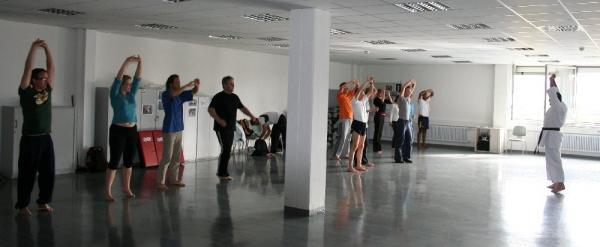 karate-kurs_bei_siemens_20091010_1330241712