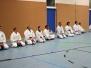 2011 Sondertraining Aikido mit Steffen