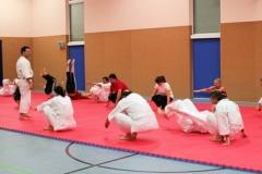 aikido_2_20120119_2012908960